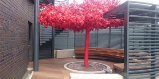 wykonczenia_z_drzewa_egzotycznego